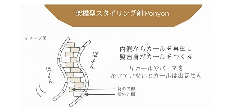 架橋型スタイリング剤Ponyon